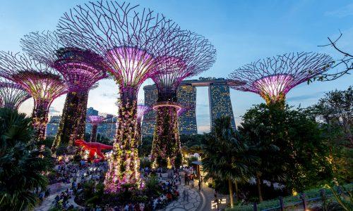 singapore-gardens-by-the-bay-161625258397-orijgp